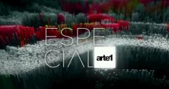 serena ucelli -especial arte 1