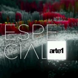 Artistas Plásticos – 2016 – 2017