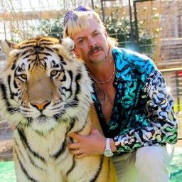TIGER KING – Como alguém pode conceber algo tão insano?